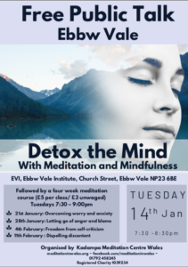 detox-the-mind-meditation-evi